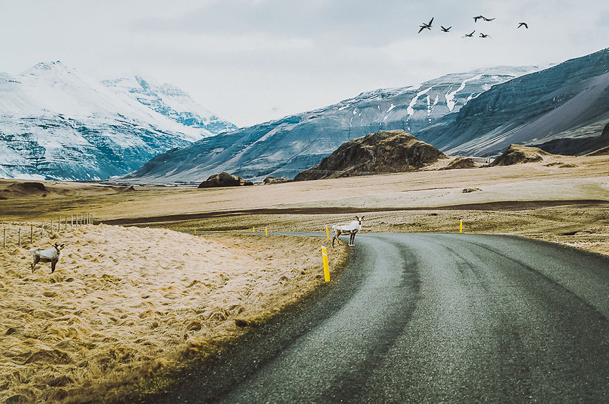 ive-been-capturing-icelandic-roads-for-16-months__880